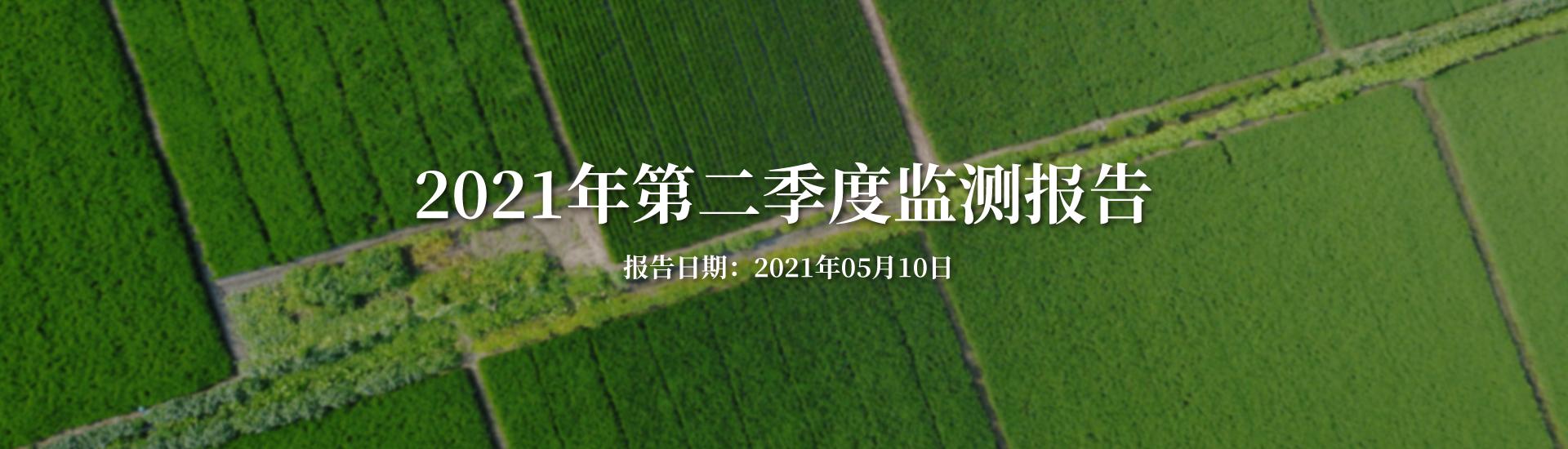 污染物排放监测报告20210209